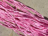 Bubblegum Pink 2-3 mm